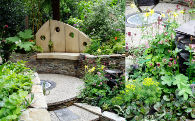 Garden Design Tips for Beginners